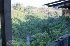 Bali3368 (11)