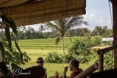 Bali3368 (12)