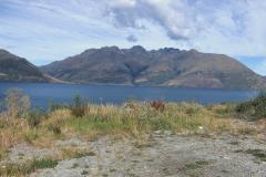 New Zealand0195 (46)