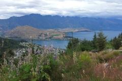 New Zealand0195 (41)