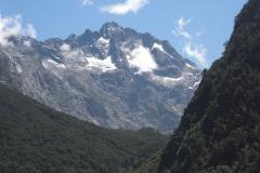 New Zealand0195 (54)