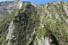 New Zealand0195 (59)