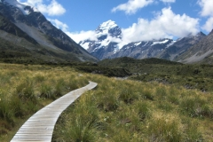 New Zealand0195 (8)
